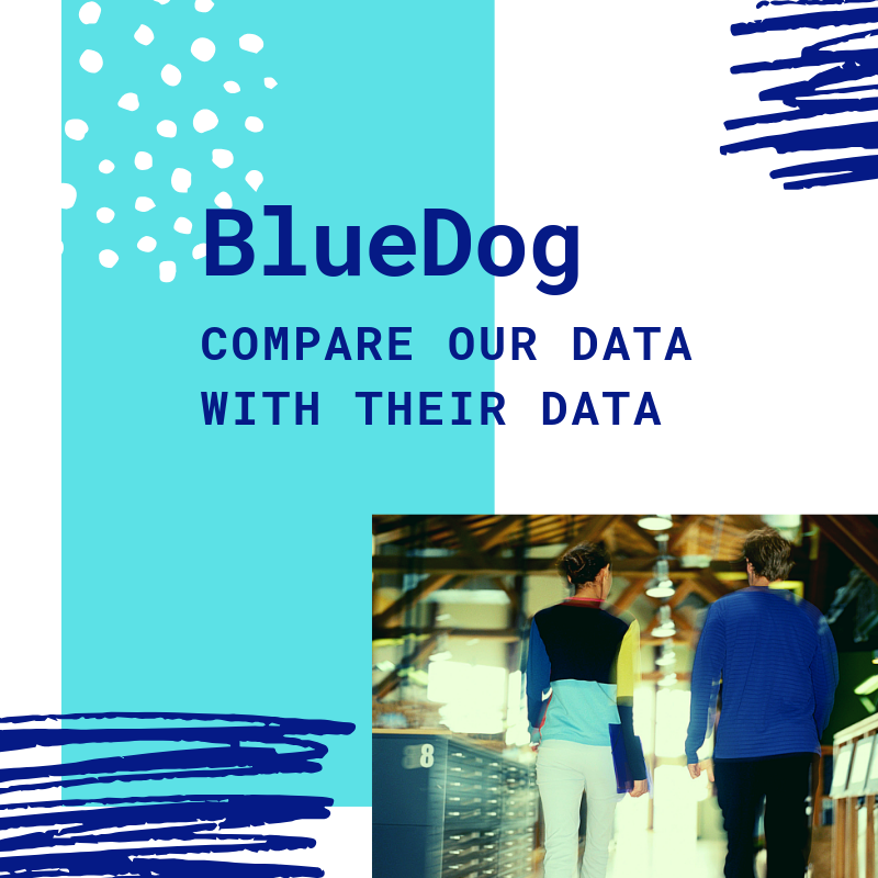 BlueDog Group Blog.png
