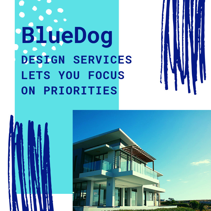 BlueDog Group Blog (4).png