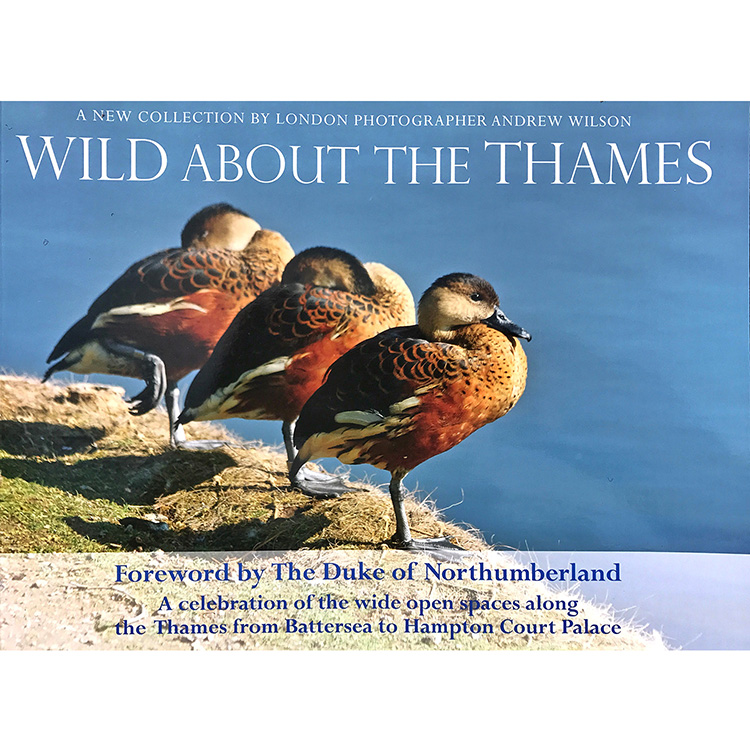 WILD ABOUT THE THAMES1500.jpg
