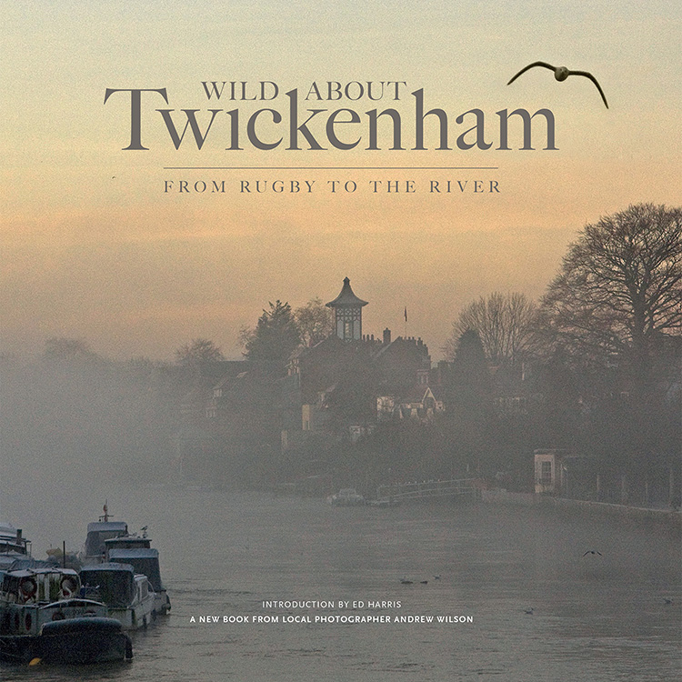 Wild_About_Twickenham_COVER_ART2 for the web.jpg
