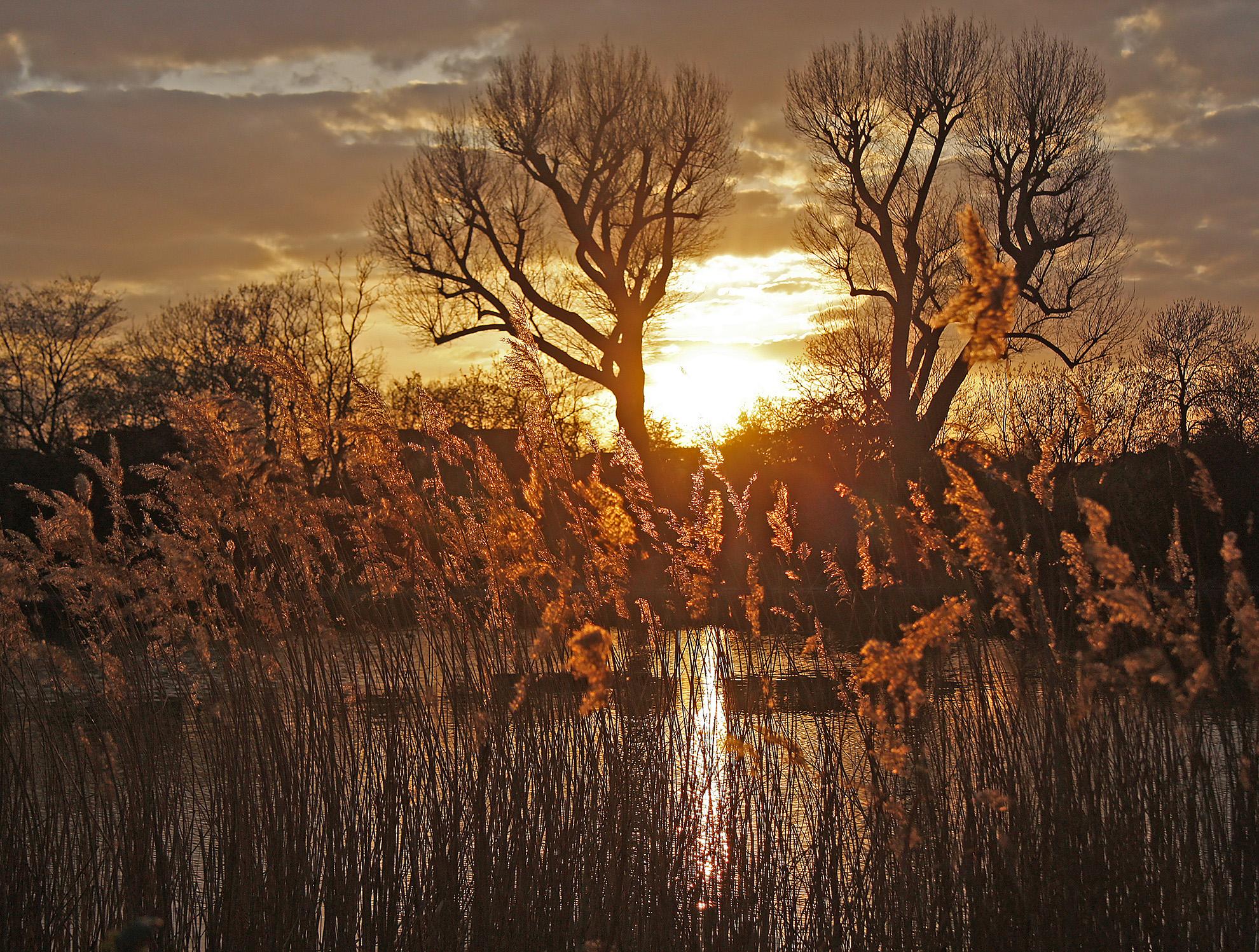 Sunset over the river.jpg