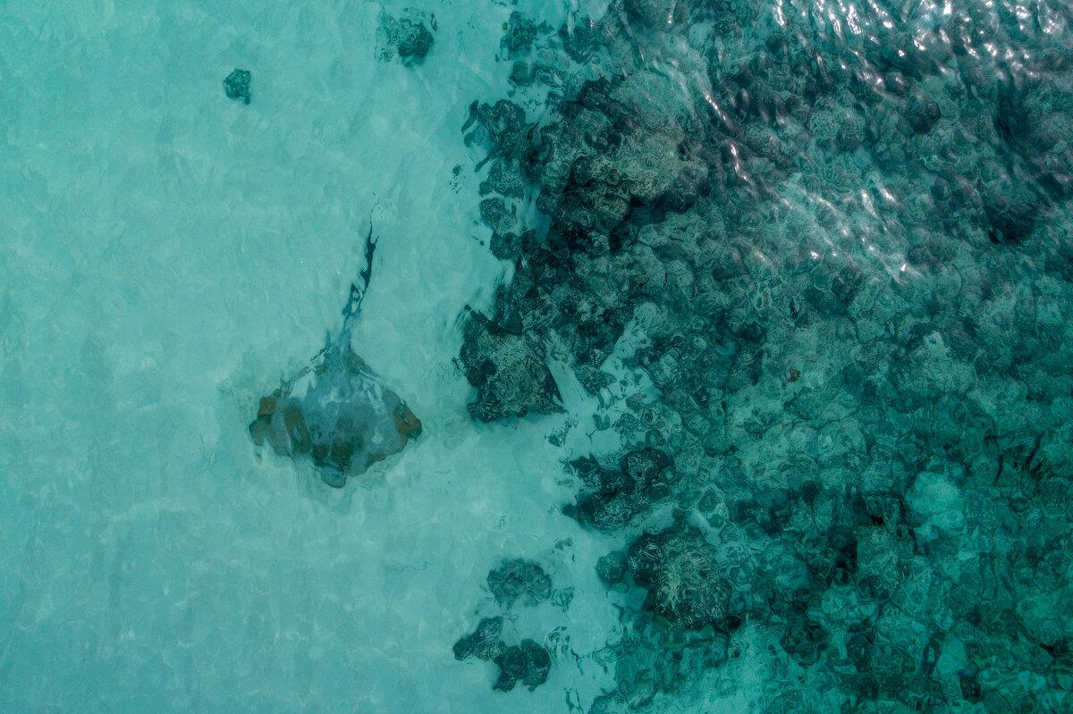 Drone Maldives_1074.JPG