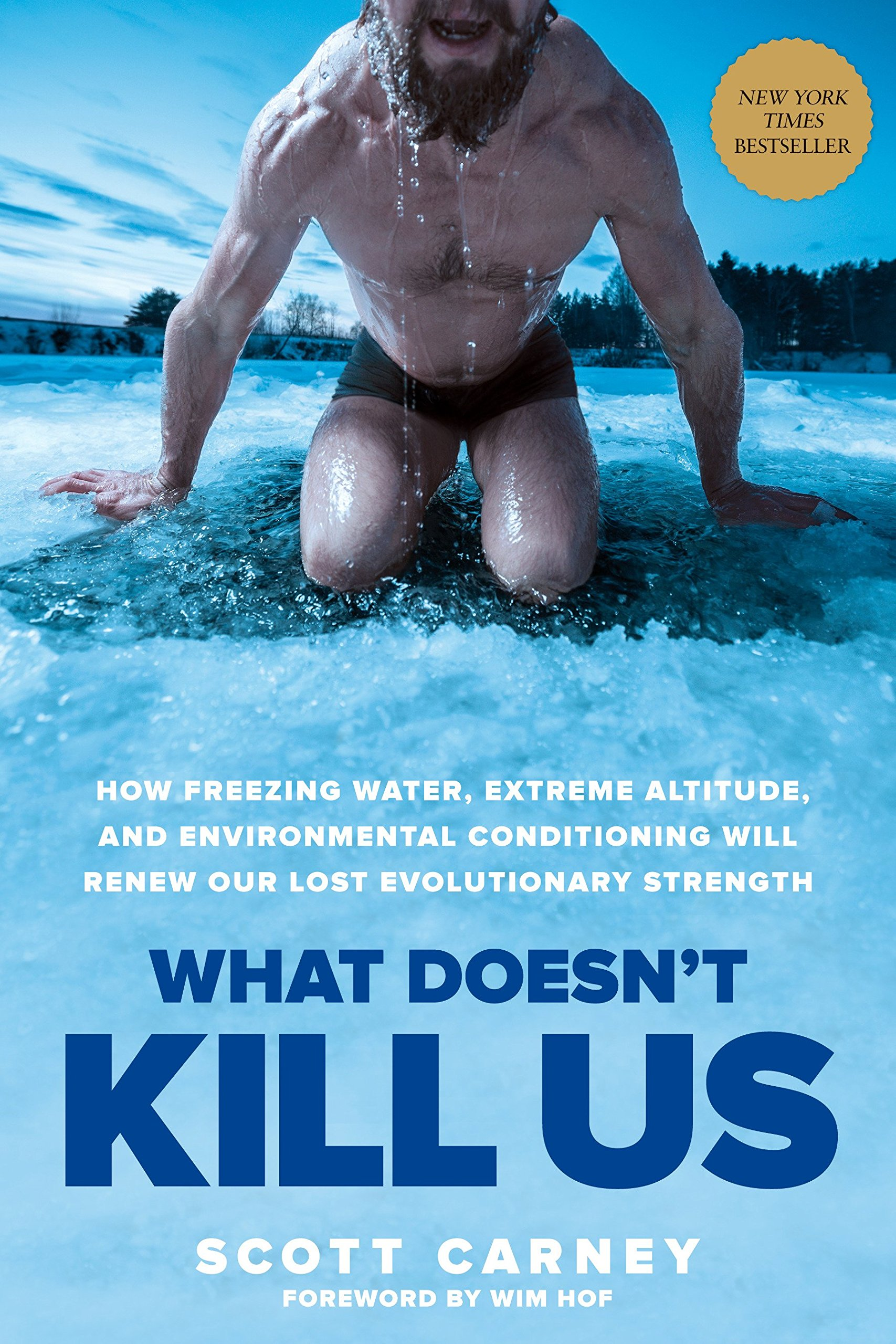 what doesn't kill us.jpg