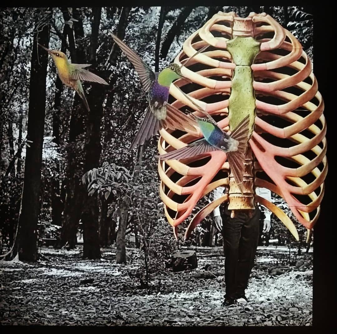 Liberdade, 2018  Tamanho: 21 x 30 cm  Técnica: Colagem  R$ 1.500,00