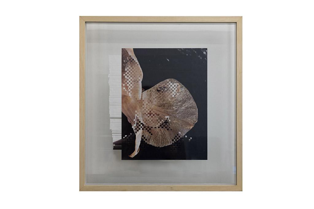Karina Walter - Brasil  36x39cm  R$1.600,00