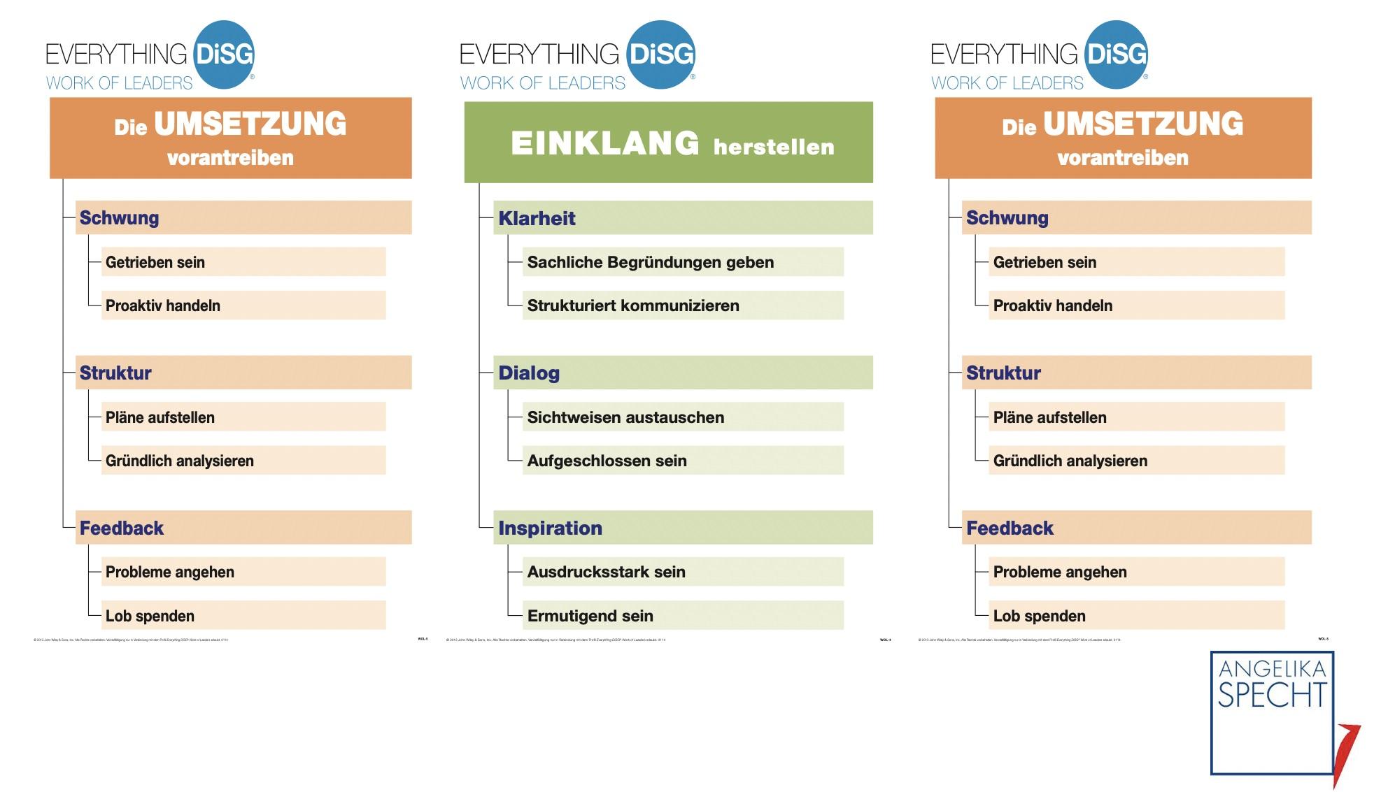 DiSG+Work+of+Leaders.jpg