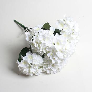 White Hydrangea (1)