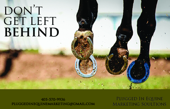 Half page ad for Plugged In Equine Marketing