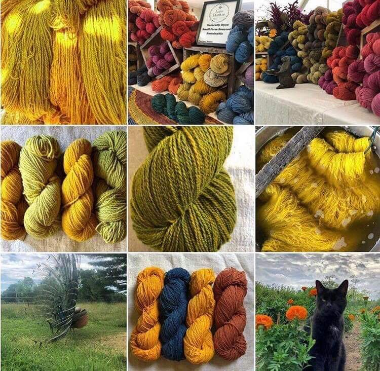 Intro to Natural Color - Instructor: Marcia MacDonald of Lana Plantae YarnsDate: Saturday, Sept. 7, 9:00-4:00 (Full Day Class)Cost: $180Min. 3 spotsMax. 8 spotsNo Experience Necessary.