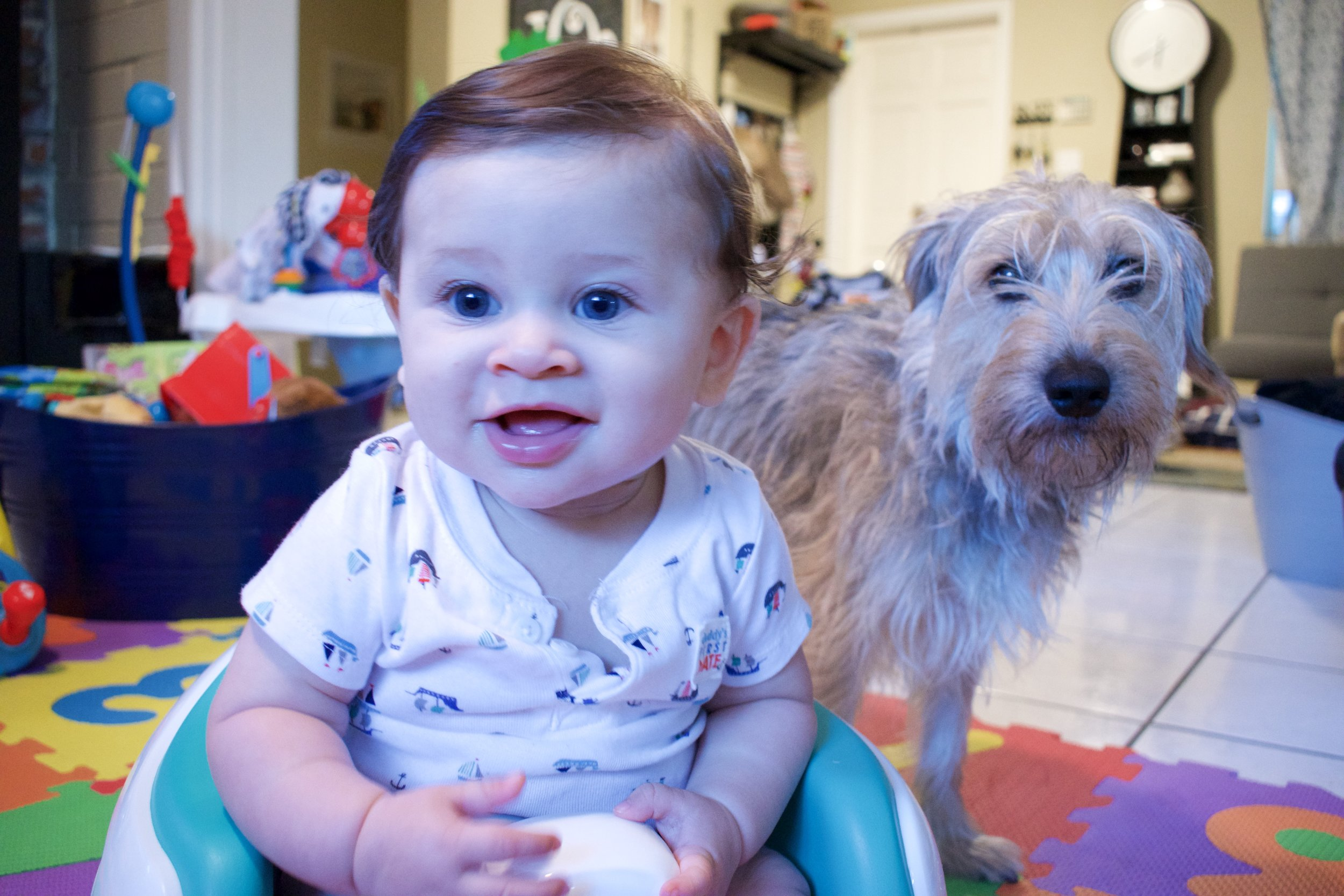 The only family member who prefers the Bumbo, Chili likes how easy it is to lick up anything that misses Noah's mouth.