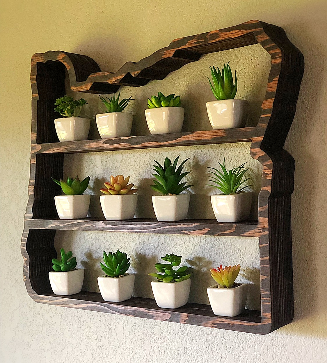 grow your herbs and succulents in style - Oregon succulent shelf