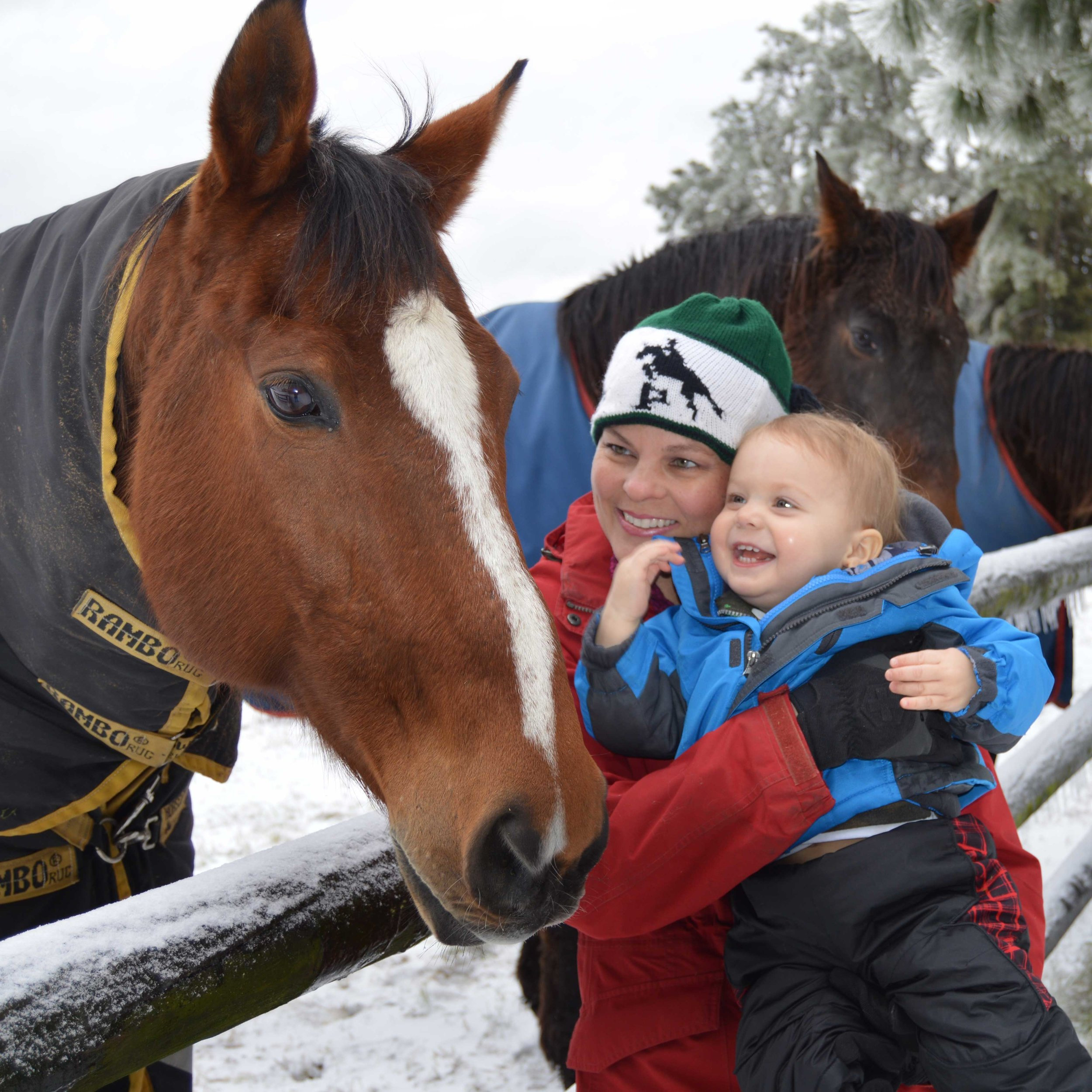 Fay and Benjamin visiting our horse, Tango, on a snow day