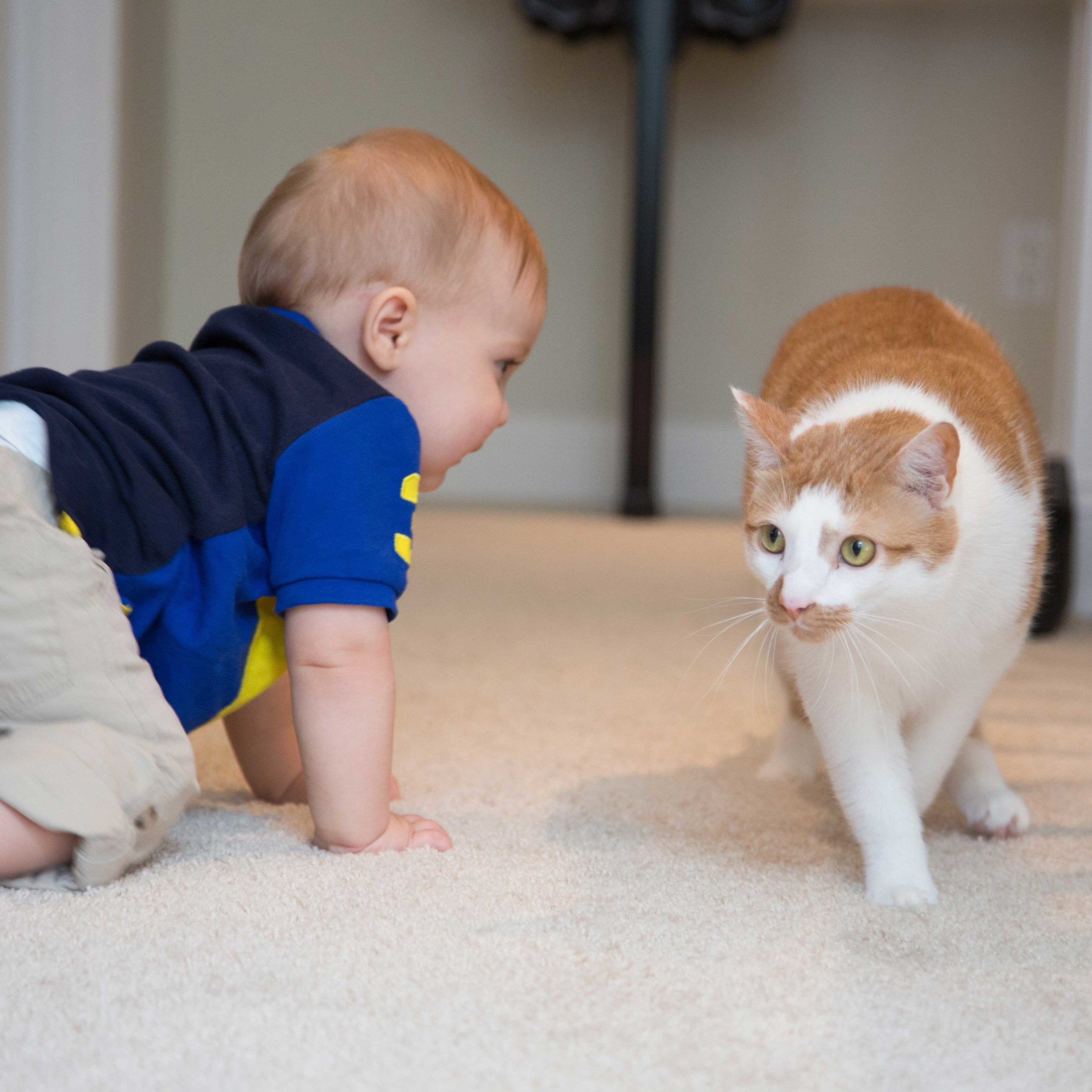 Benjamin with our cat Gabriel