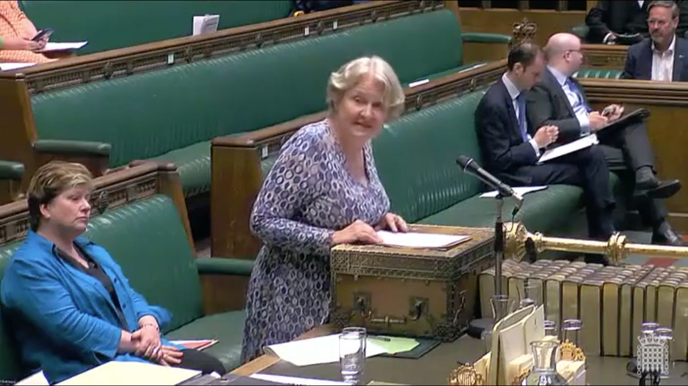 The Shadow Asia Minister, Helen Goodman MP