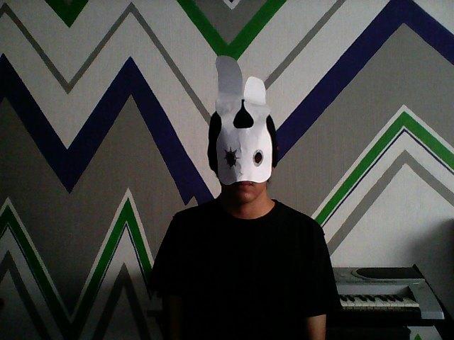 spp mask 1.JPG