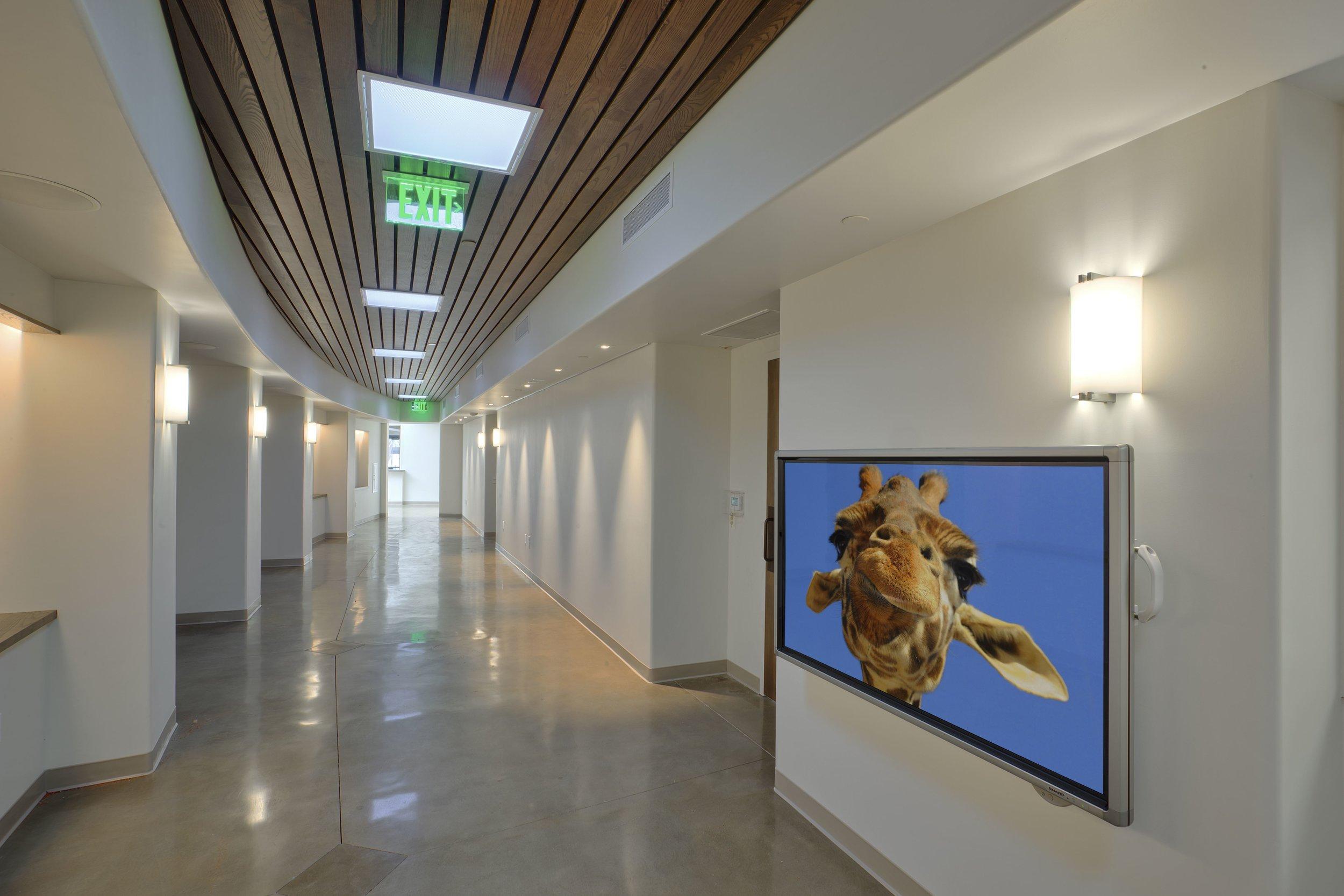 Zoo Hallway.jpg