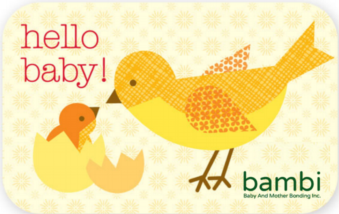 BAMBI Gift Certificates! - Give the gift of newborn guidance to the parents-to-be!