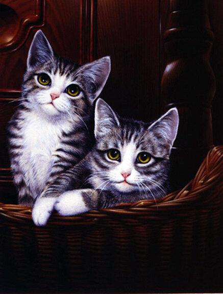 F.Purina.kittens.jpg