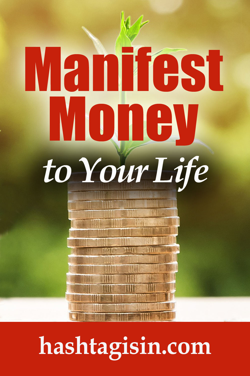 Manifest Money in Your Life.jpg
