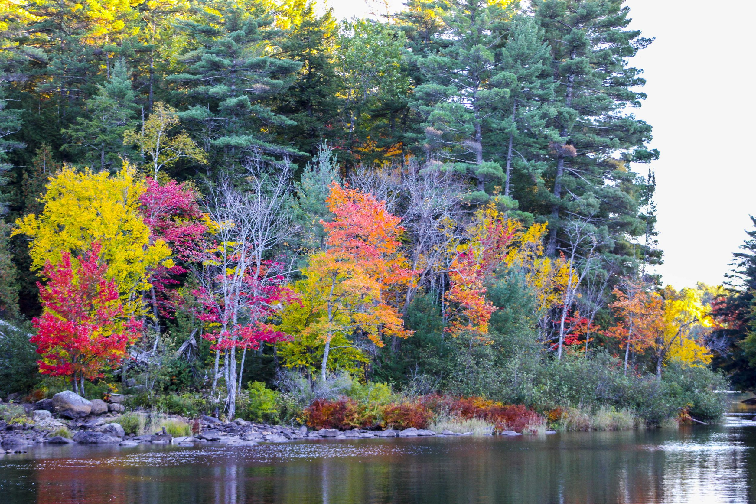 Bracebridge - Fall Season
