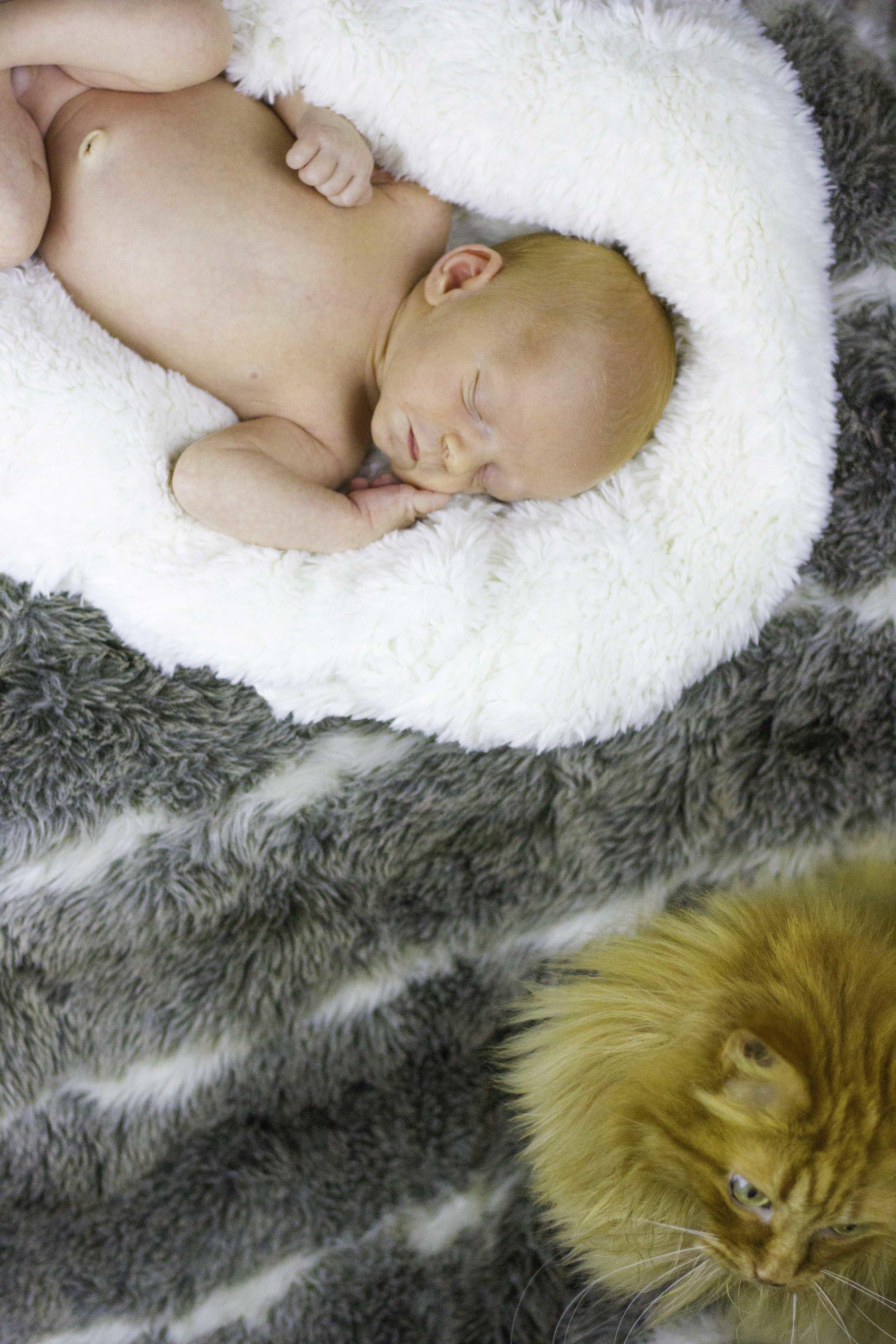 Baby Ciaran -