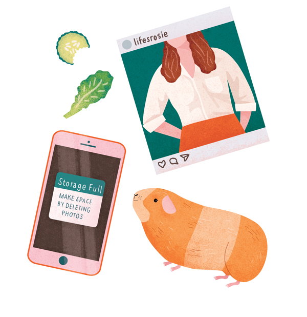 The woes of using Instagram and trying to take the perfect selfie (all the more difficult when your phone memory is from with pictures of your children's guinea pigs). nb. I think this is the first time I've ever drawn a guinea pig...