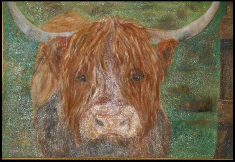 Highland Cow_sm.jpg