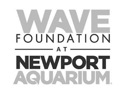wave-foundation-logo.png