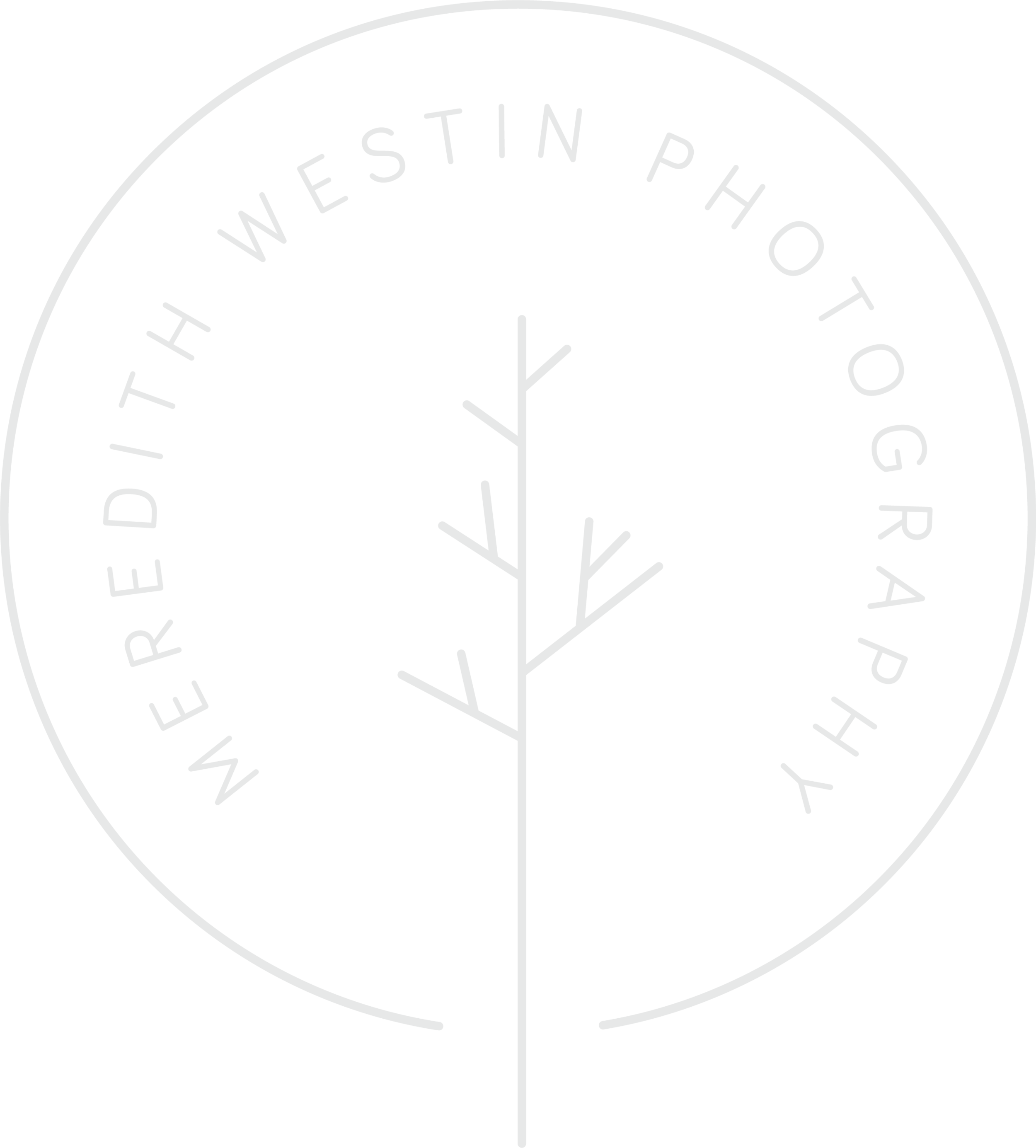 MW_Logo - Meredith Westin.png