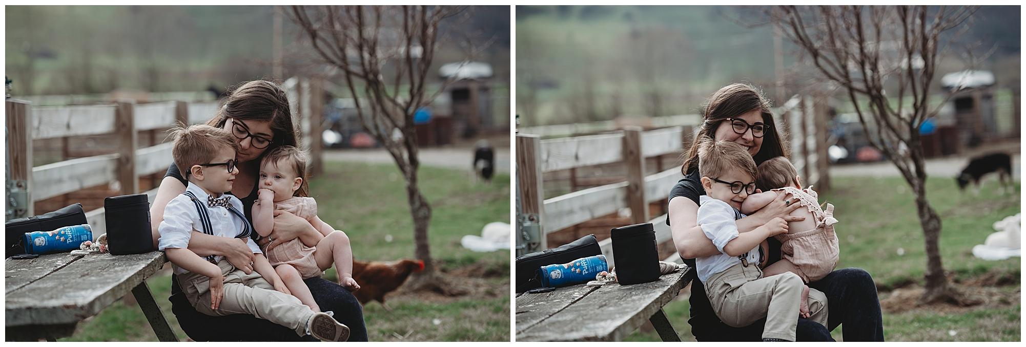 3M Livestock | Boone Family Photographer