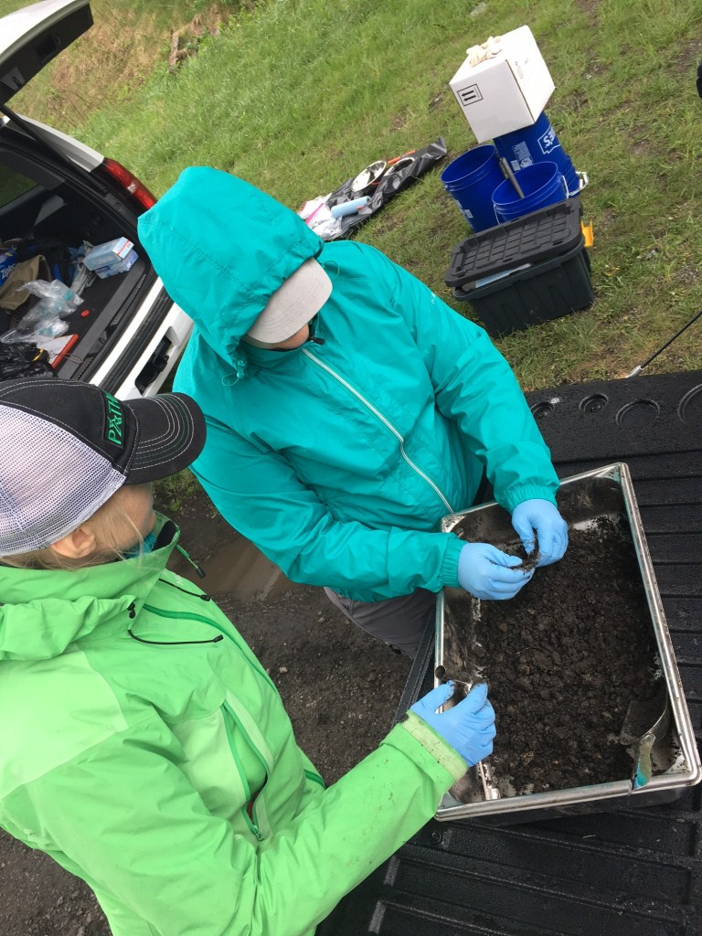 Specialists - Our Natural Resource Specialists have experience in both urban and rural landscapes including projects in the Little Coal River, Back Creek, Cheat River, Elk Headwaters, Knapps Creek, Shavers Fork, Upper North and South Branches of the Potomac, West Fork River, Monongahela River, Tug Fork, Lower Kanawha, Guyandotte River, Ohio River direct drains, and Youghiogheny River watersheds.