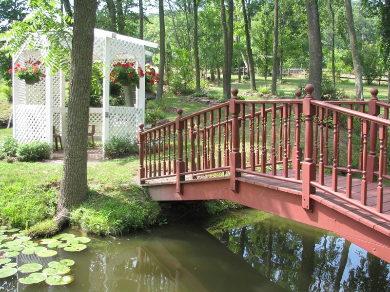 bridge-pond.jpg