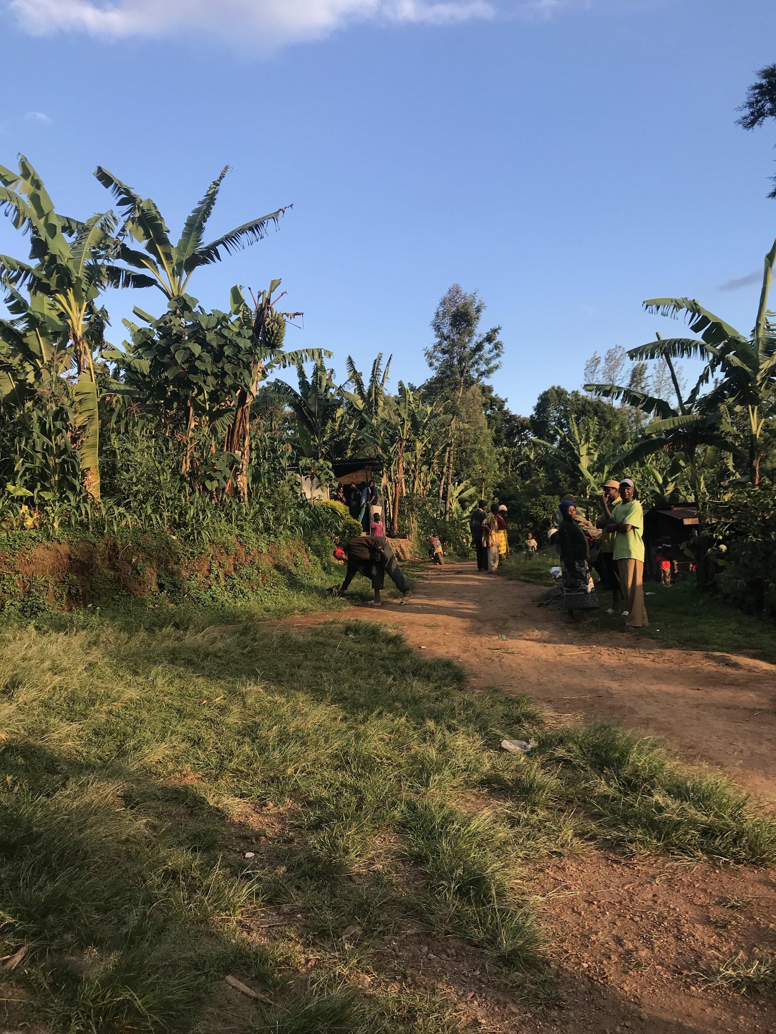The main road through the Chaga village.