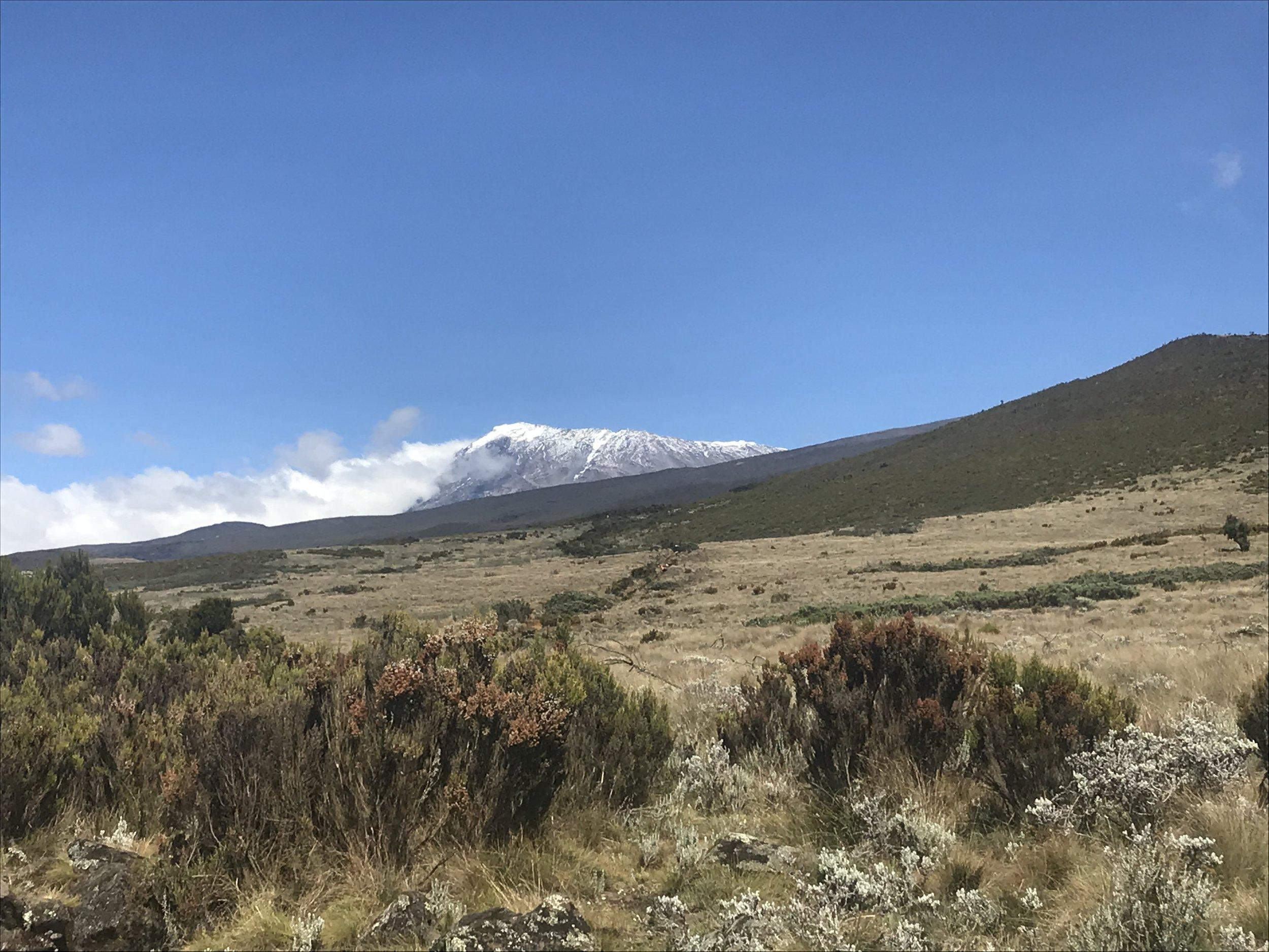 Acclimation hike views above Horombo Huts of Uhuru Peak, our summit destination.