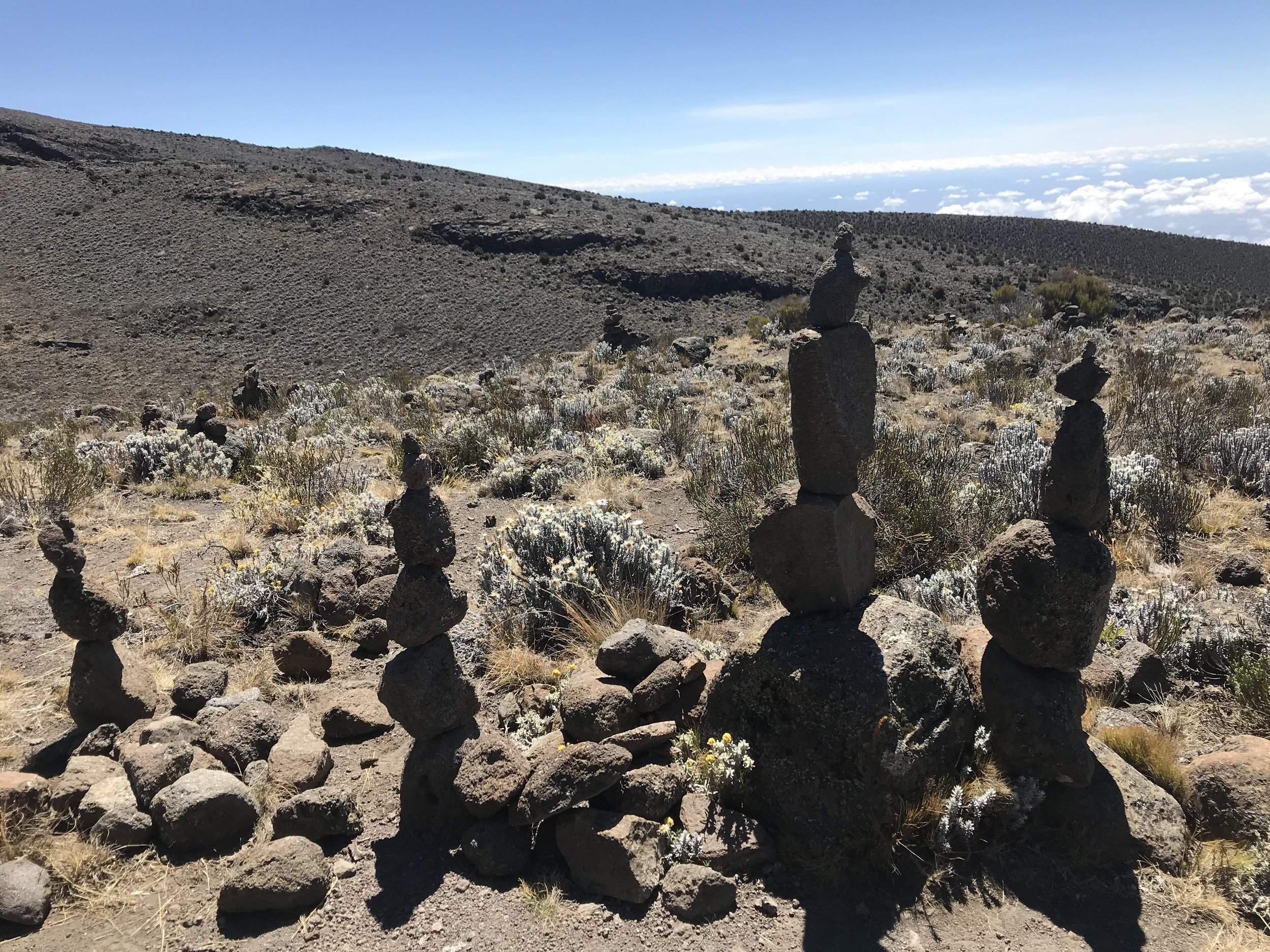 Cairns at Zebra Rocks, one of our destinations on the acclimation hike from Horombo.