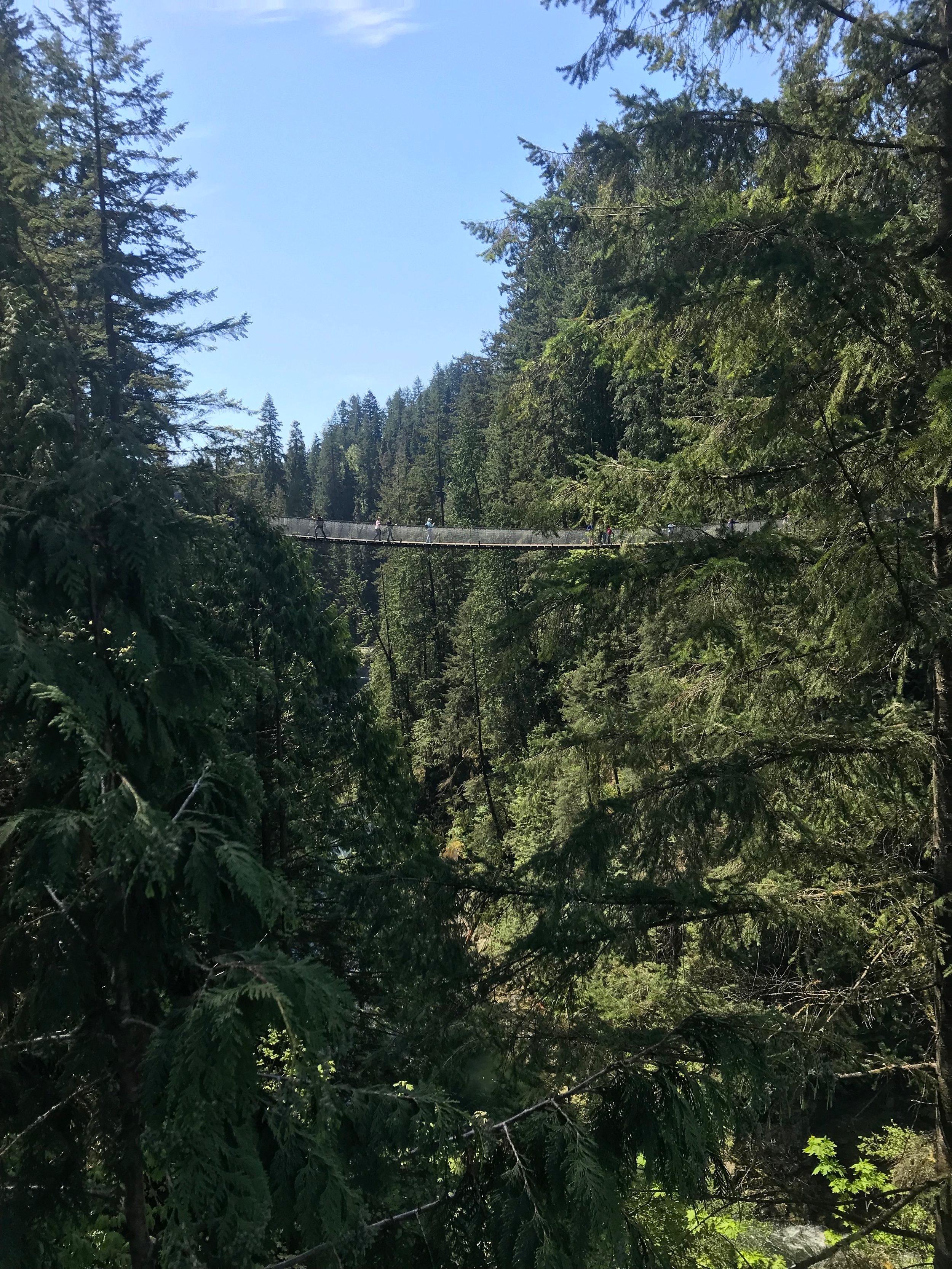 The suspension bridge from afar.