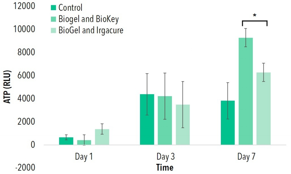 Figure 4: Cell seeding on BioGel (GelMA) crosslinked with BioKey (LAP) and Irgacure photoinitiators. Groups with differing (*) indicate statistical differences (p<0.05).