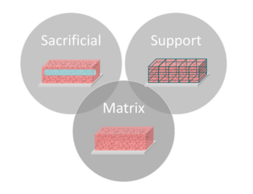 The main bioink categories: matrix, sacrificial and support. For a comprehensive review of all bioinks for extrusion bioprinting,    check out this paper!