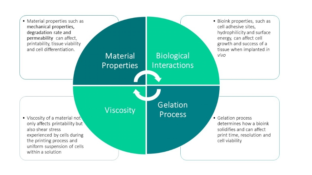Figure 2: The above matrix properties (viscosity, gelation process, material properties and biological interactions) all play a role in the effectiveness of the bioink for creating viable 3D tissues with complex geometries.
