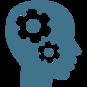 brain-gear-icon-79790 copy.png