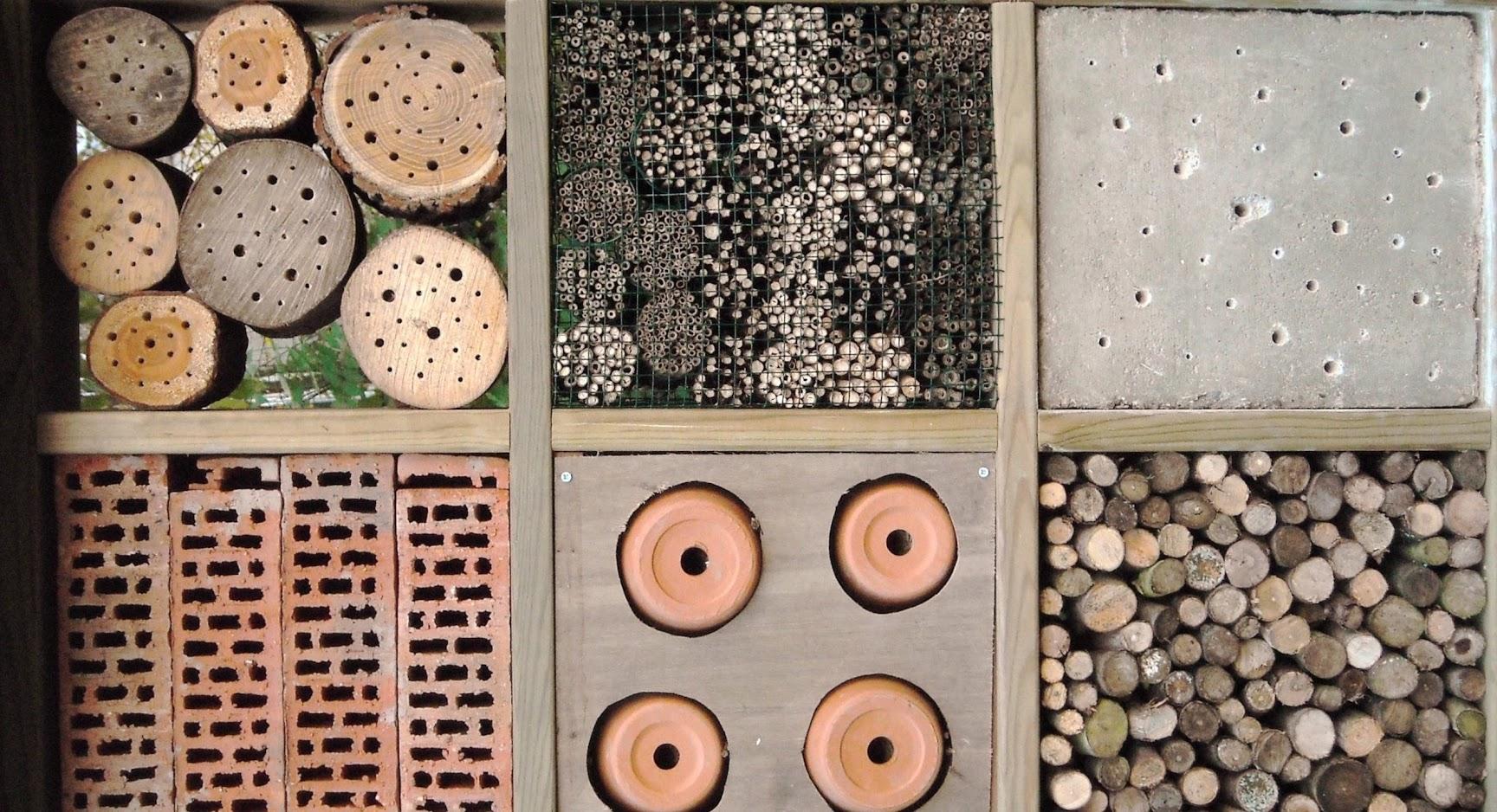 wood-permaculture-landscape-design.jpg