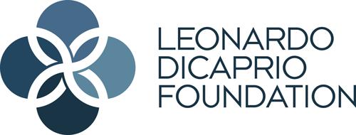 LDF-big-logo-1.png