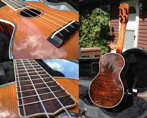 mj-franks-concert-ukulele-collage (1).jpg