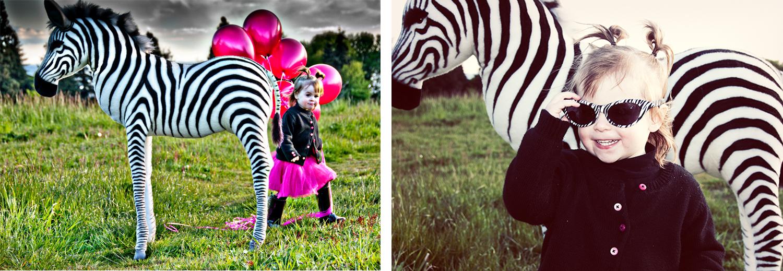 Zebra collage.jpg