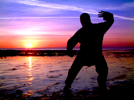 MOVEMENT DISCIPLINES  It has been said that 'Life is movement.' Emphasis is put on healthy postural alignments and the therapeutic aspects of Chinese martial arts.Tai chi & its counterpart, Qigong are used as well.