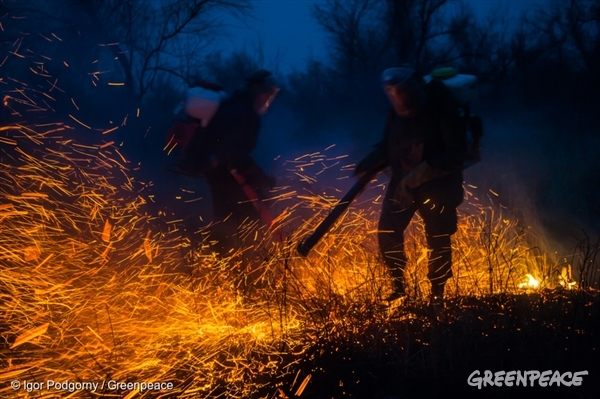 Grass Fire in the Astrakhan Nature Reserve, Russia - 13 Mar, 2015