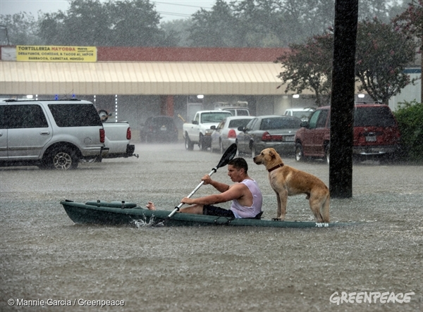 Hurricane Harvey Flooding Rescue in Texas - 27 Aug, 2017
