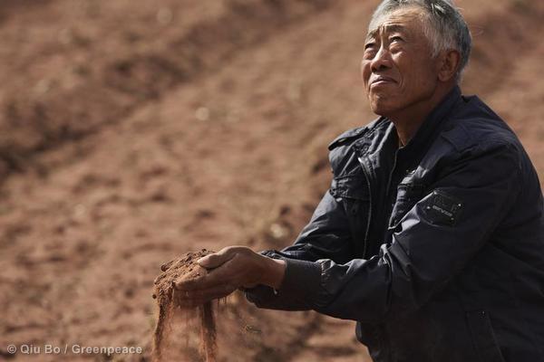 drought, Mongolia, farmer Zhang Dadi, gpweb.jpg