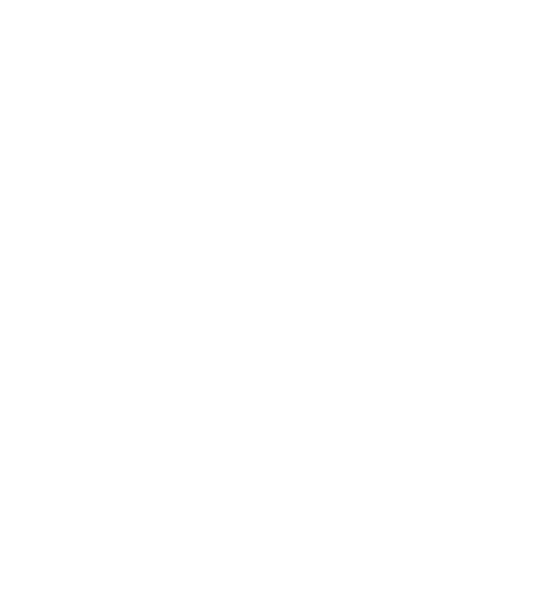 FTP INC Logo white.png
