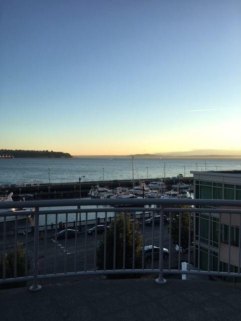 The gorgeous view from Elliott's Oyster House.